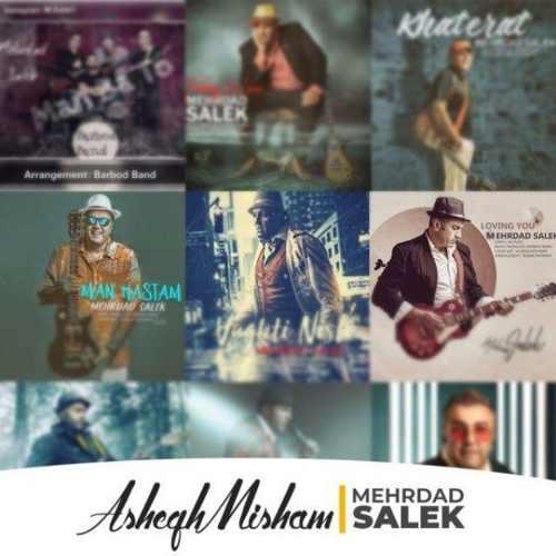 دانلود موزیک جدید مهرداد سالک عاشق میشم